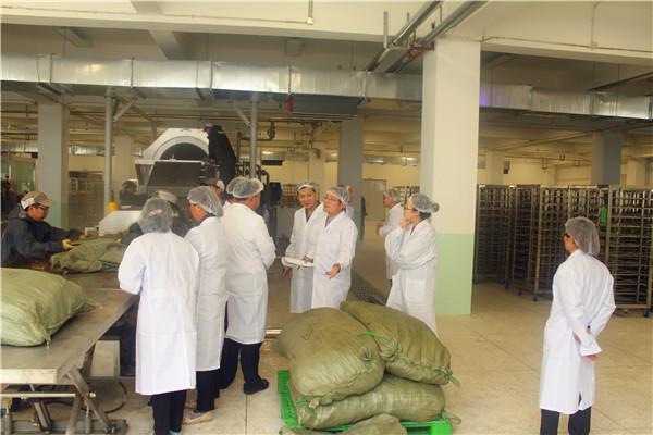 康美新开河通过新版药品GMP认证