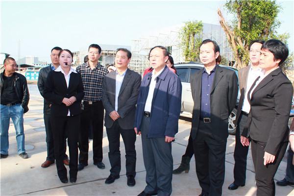 四川省副省长陈文华调研康美药业阆中医药产业基地项目