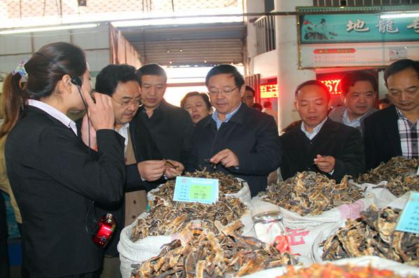 全国政协常委季允石考察康美(亳州)中药材专业市场
