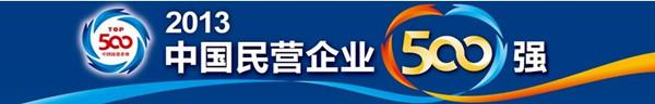 2013中国民企500强发布 康美药业第308名