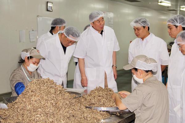 国家中药管理局副局长李大宁调研成都康美中药饮片基地