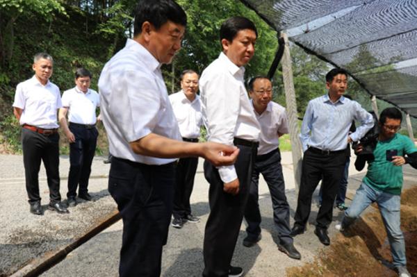 通化市委书记李国强到集安大地参业考察