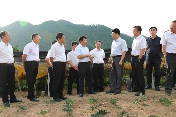 吉林省政协党组书记、副主席金振吉考察集安大地参业