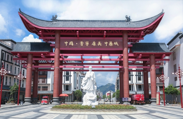 中国.普宁康美中药城