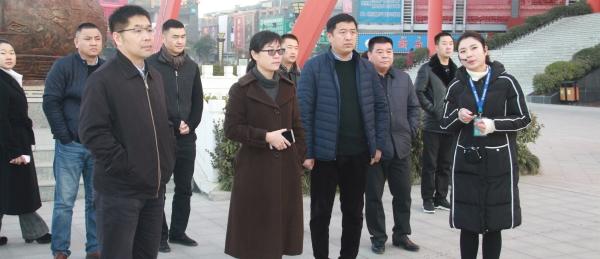 昆明市政府副市长王建颖率队考察康美(亳州)中药城