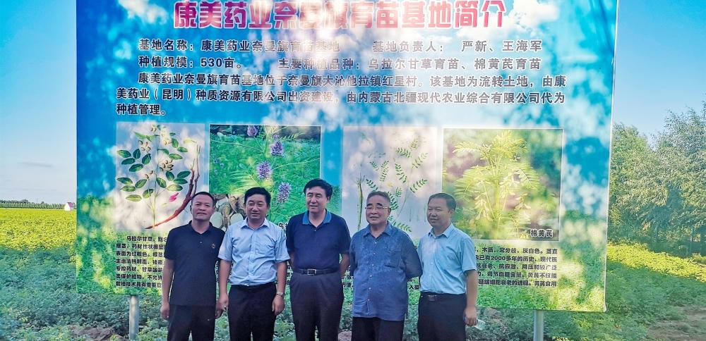中国中医科学院院长张伯礼考察康美药业道地中药材种植基地