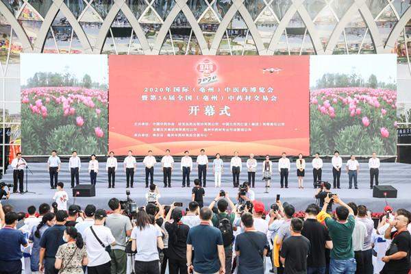2020年国际(亳州)中医药博览会开幕